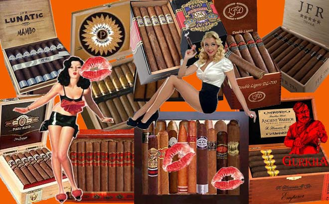 Big Daddy...Cigar Sampler..Free Shipping !